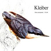 BiHU Vogelführer Natur Hergenrath Völkersberg Kleiber