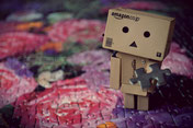 Danbo finding the missing piece