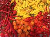 Hot-mix frischer Chilis.