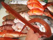 アカヤガラのにぎり寿司 椀物 鍋物