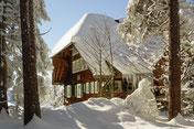 Winter, Schnee, Haus, Wald