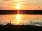 Coucher de soleil en Baie de Somme Chambre d'hôtes en Baie de Somme