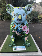 Koala expositie Sydney