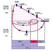 Fluss-Volumen-Kurve