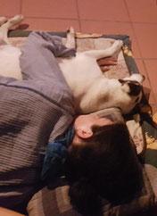 Bild: Joey und Andrea Kornfeld; Smeura Rumänien, Tierhilfe Hoffnung, Tierheim Bielefeld