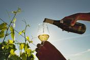 Bourgogne Blanc Le Clos Gandin