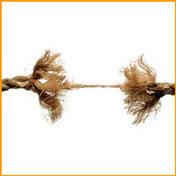 integratori naturali umore stress depressione