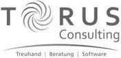Torus Consulting AG