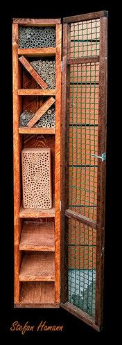 Vogelschutz Spechtschaden Specht Buntspecht great woodpecker Dendrocopos major Nisthilfen Insektennisthilfen Insektenhotel Aufgehackte Halme  bee hotel insect hotel  Wildbiene wild bee