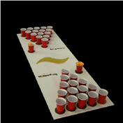 Beer Pong Sets