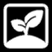 Wurzel Icon