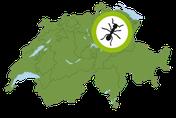Service Region Biozida