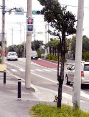 台風の影響で向きが変わった八島町の歩行者用信号機=8日午後、八島町