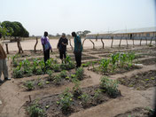 Schulgarten in Amdallai