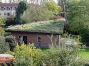 De Groene Dak tuinhuis