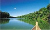 Bootsfahrt im Amazonasurwald