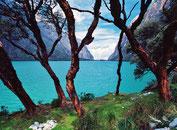 Lagunae Llanganuco im Nationalpark Huascaran