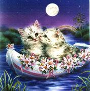 chats angoras blanc amoureux dans une barque sur l'eau au clair de lune