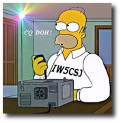 Homer Iw5csj Simpson