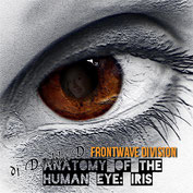 Frontwave Division - Anatomy of the human eye (Iris)