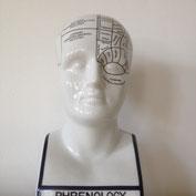 Phrenologie Büste (von vorne)