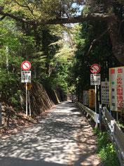 和田峠最後の登り(頂上側から)