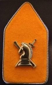 kraagspiegel I&V, Inlichtingen & Veiligheid defensie