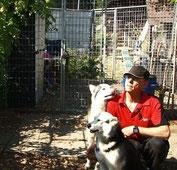 Roger mit Yukon und Borea