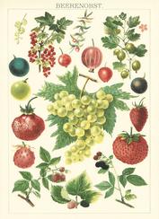 Historische Illustration