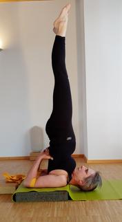 Bild yogakurse