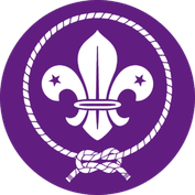 La Flor De Lis Web Del Grupo Scout San Antonio