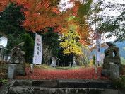 願望成就の赤い絨毯
