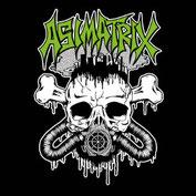 ASIMATRIX - s/t