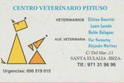 Tierarzt in Santa Eulalia