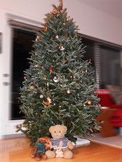 Kasimir, Cäsar und Fredi unterm Weihnachtsbaum in Saskatoon, Canada