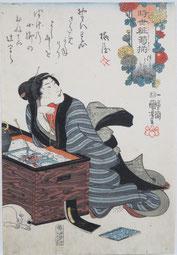 国芳,浮世絵,猫,菊