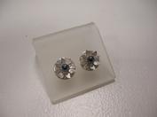 Zilveren oorstekers hematiet