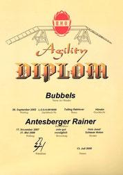 Agility Diplom