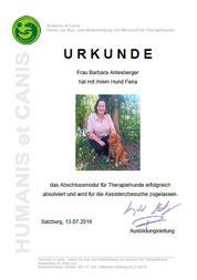Abschlussmodul für Therapiehunde und Zulassung für Assistenzbesuche