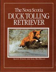The Nova Scotia Duck Tolling Retriever