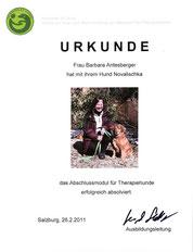 Abschlussmodul für Therapiehunde