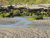 Große Steine mit Moos am Strand mit kleinem Priel