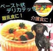 ドッグフード無添加,手作りペースト状,離乳食,介護食