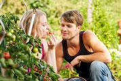 Romantiktage in der Natur