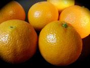 Orangen (groß)