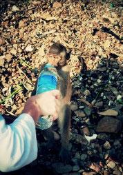 Trinkwasser nur aus geschlossenen Flaschen trinken