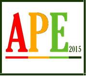 Attestato di Prestazione Energetica APE Nuovo APE 2016. Certificazione Energetica a Roma.