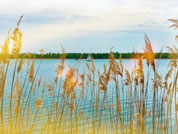 Segway-Tour zum Markkleeberger See