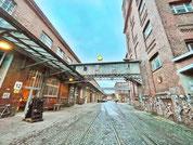 Aussichts-Linie Segway Tour, Stadtrundfahrt in Leipzig, Giraffen im Zooschaufenster