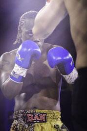 K1 & MMA